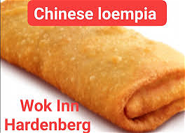 Foto Chinese grote loempia